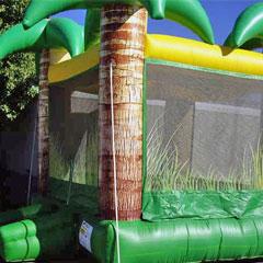 Air Bouncers / Moonwalks / Bounce Houses / Jump Castle for rent in metro Atlanta