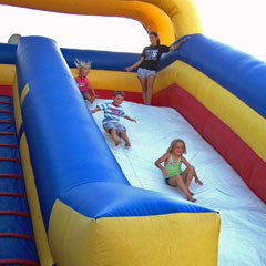 Giant Slide Inflatable rental in Cherokee County (Canton, Woodstock)