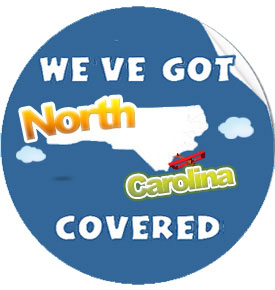 Company Picnic for North Carolina, Charlotte, Raleigh, Greensboro, Winston-Salem, Durham