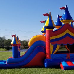 Big Top Circus theme 2 lane water slide combo